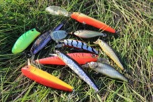 A selection of different types of lures