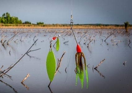 The perfect way of how to rig a spinner bait